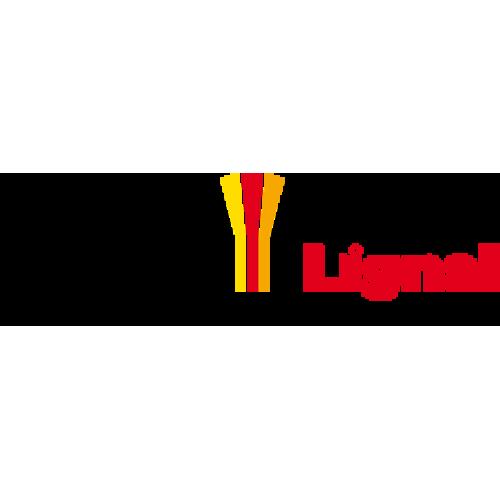 Hesse Lignal
