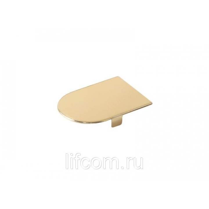 Накладка декоративная для скрытых петель, 120x30 мм, алюминий, золото полированное